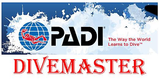 Curso DiveMaster PADI - Profesional del buceo recreativo