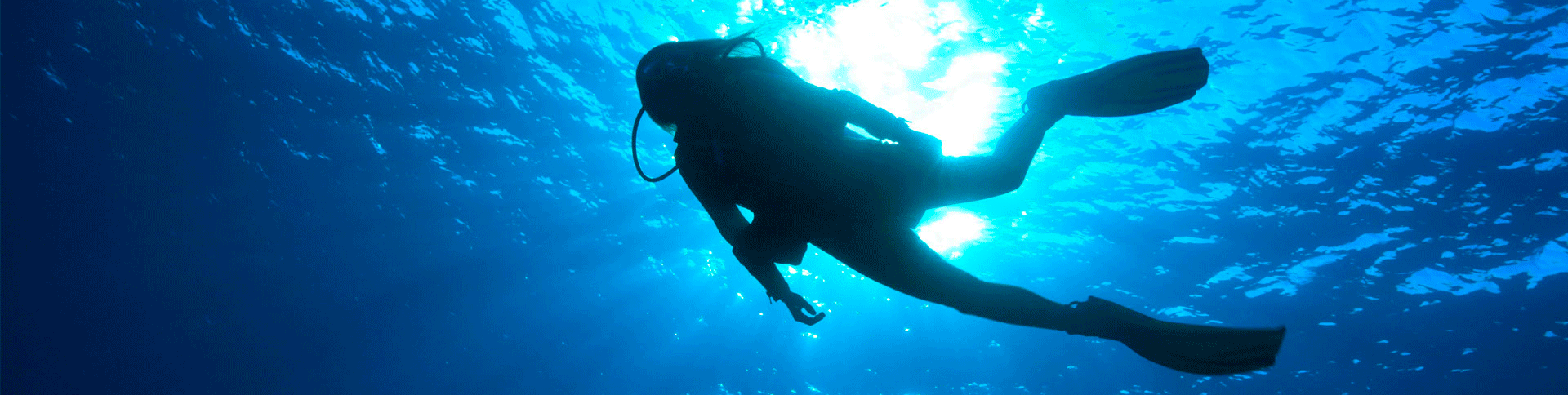 Diving Buceo plongee Estepona