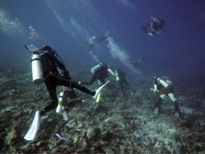 Especialidad de Buceo en corrientes drift-diver les courants