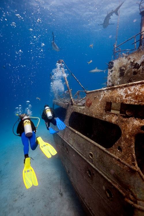 Curso de buceo diving course cours de plongée