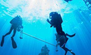 Advanced Open Water Diver PADI - Buceador avanzado Plongeur avancé