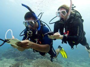 PADI Adventure Diver - Primer paso a buceador avanzado