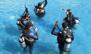 Programa Recordatorio de buceo- Refresh refresco