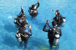 Programa Recordatorio de buceo- Refresh refresco