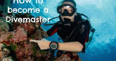 DiveMaster Estepona