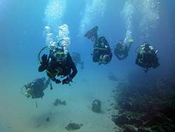 diving buceo plongee Tarifa
