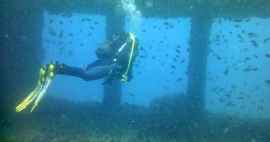 Buceo en Gibraltar Diving in Gibraltar Plongée à Gibraltar